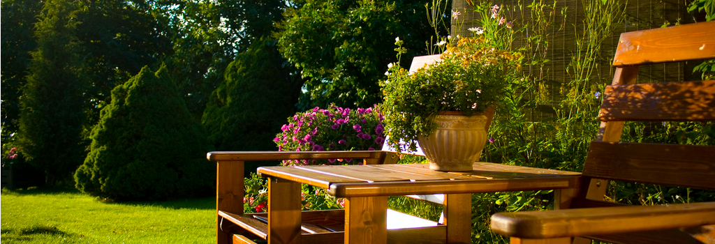 Designing a Relaxing Backyard Space on a Budget