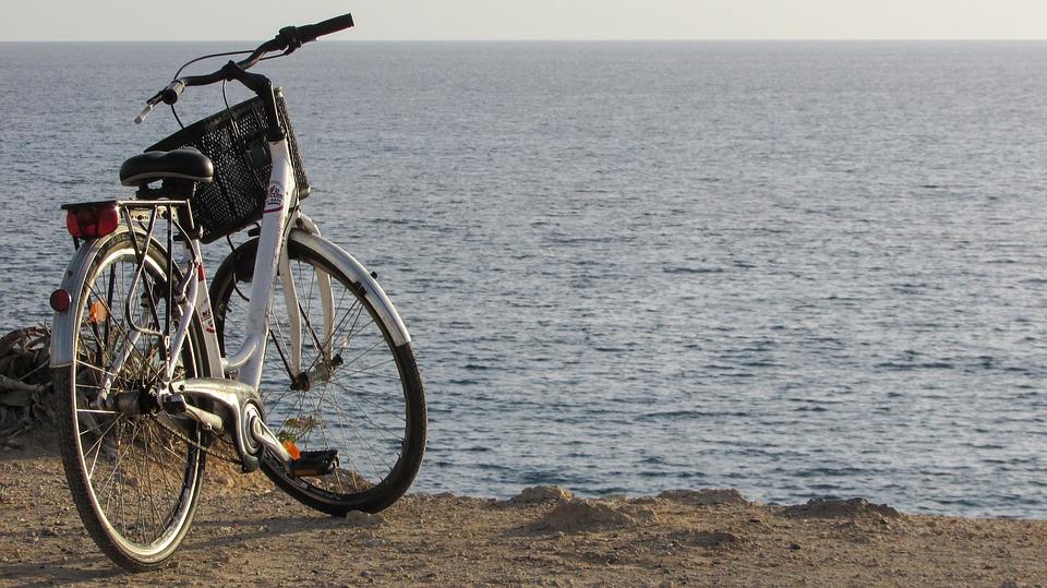 Biking in Collingwood