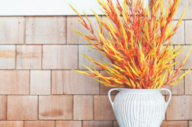 Ways to Decorate Your Collingwood Home for Fall