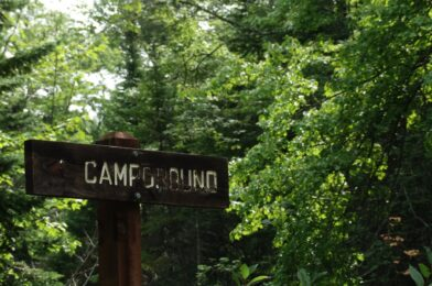Top Campgrounds Near Collingwood