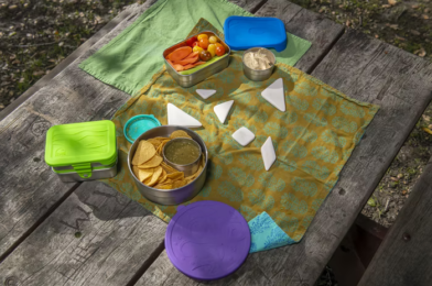 Back to School: Easy Lunch Ideas for the Kids